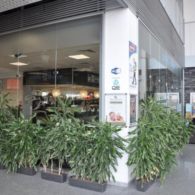 6037230f0 Cool Cafe | Obchody | Reštaurácie, fast food a kaviarne v ZOC MAX ...
